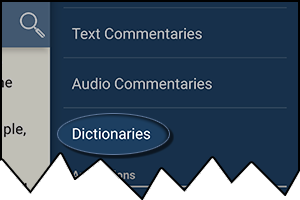Dictionaries in the Verse tap menu